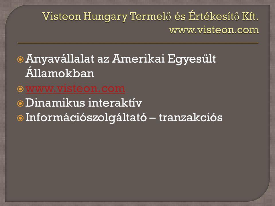  Anyavállalat az Amerikai Egyesült Államokban  www.visteon.com www.visteon.com  Dinamikus interaktív  Információszolgáltató – tranzakciós
