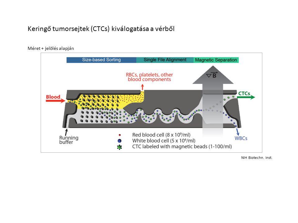 Méret + jelölés alapján Keringő tumorsejtek (CTCs) kiválogatása a vérből NIH Biotechn. Inst.