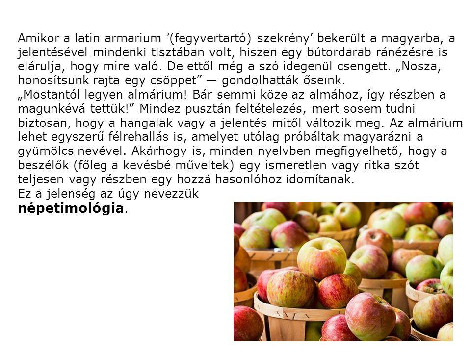 Amikor a latin armarium '(fegyvertartó) szekrény' bekerült a magyarba, a jelentésével mindenki tisztában volt, hiszen egy bútordarab ránézésre is elárulja, hogy mire való.