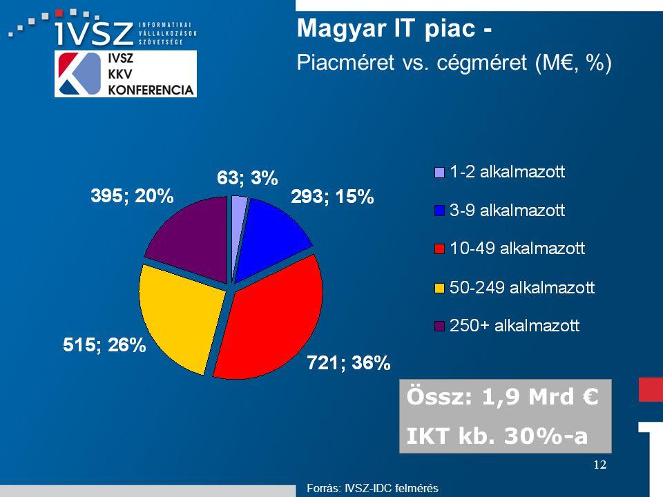 12 Magyar IT piac - Piacméret vs. cégméret (M€, %) Forrás: IVSZ-IDC felmérés Össz: 1,9 Mrd € IKT kb. 30%-a