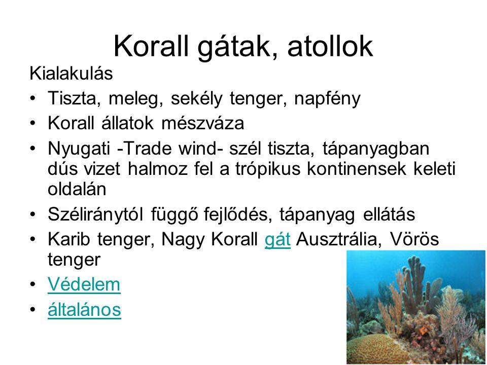 Korall gátak, atollok Kialakulás Tiszta, meleg, sekély tenger, napfény Korall állatok mészváza Nyugati -Trade wind- szél tiszta, tápanyagban dús vizet