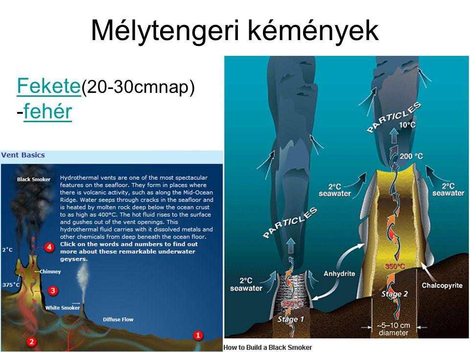 Mélytengeri kémények Fekete Fekete (20-30cmnap) -fehérfehér