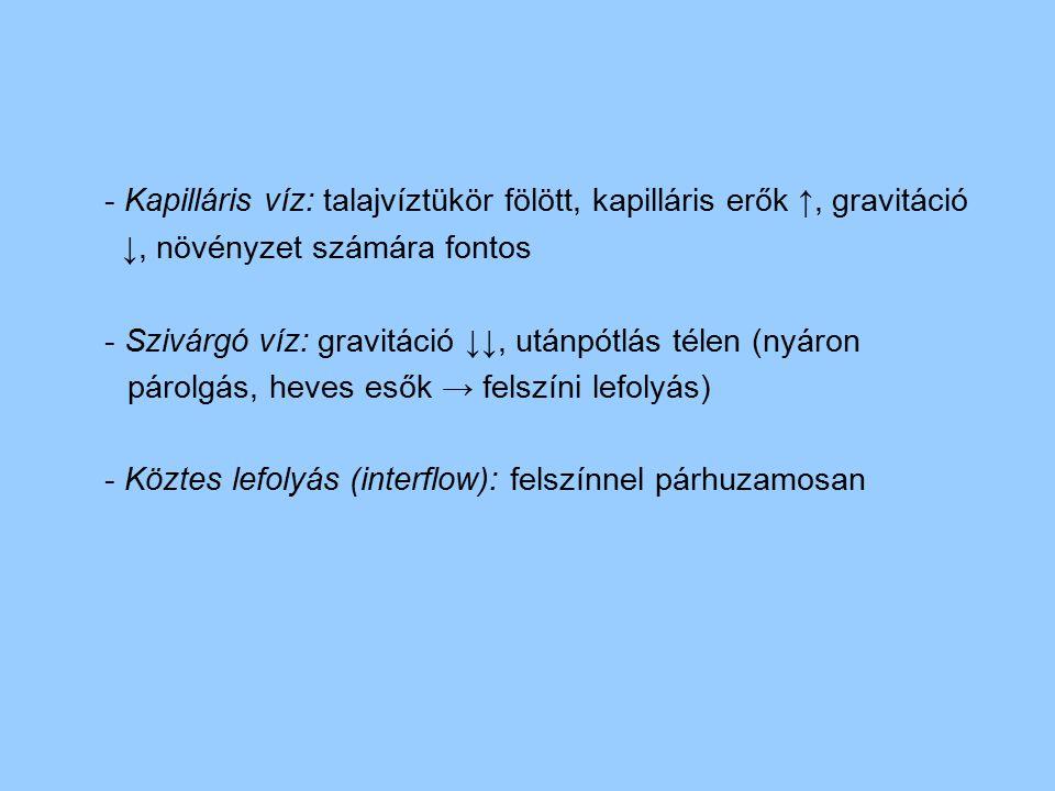 - Kapilláris víz: talajvíztükör fölött, kapilláris erők ↑, gravitáció ↓, növényzet számára fontos - Szivárgó víz: gravitáció ↓↓, utánpótlás télen (nyá
