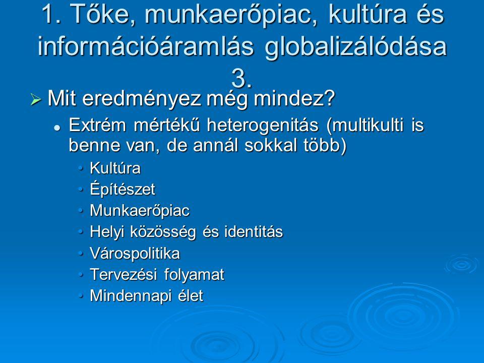 1. Tőke, munkaerőpiac, kultúra és információáramlás globalizálódása 3.
