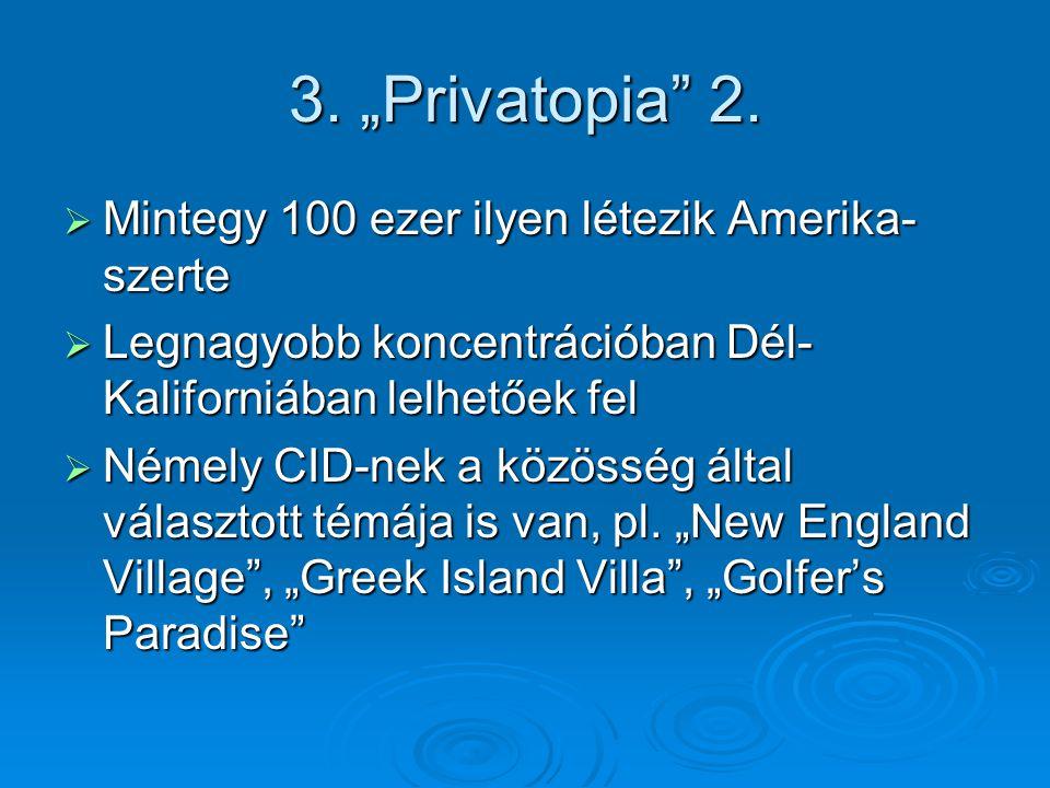 """3. """"Privatopia 2."""