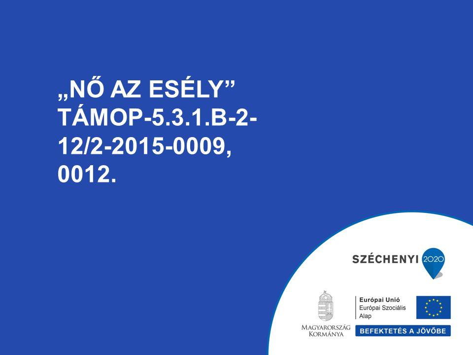 """""""NŐ AZ ESÉLY"""" TÁMOP-5.3.1.B-2- 12/2-2015-0009, 0012."""