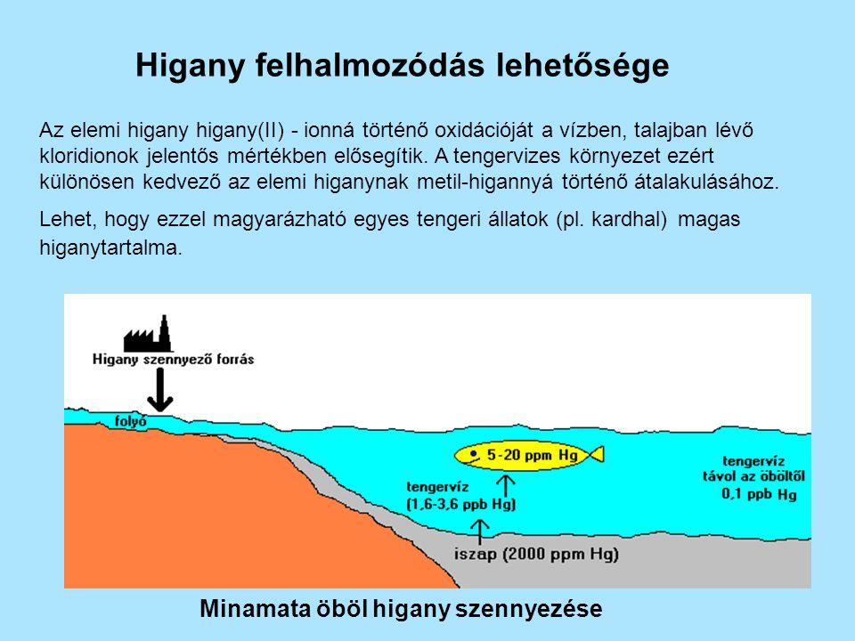 Higany felhalmozódás lehetősége Az elemi higany higany(II) - ionná történő oxidációját a vízben, talajban lévő kloridionok jelentős mértékben elősegít