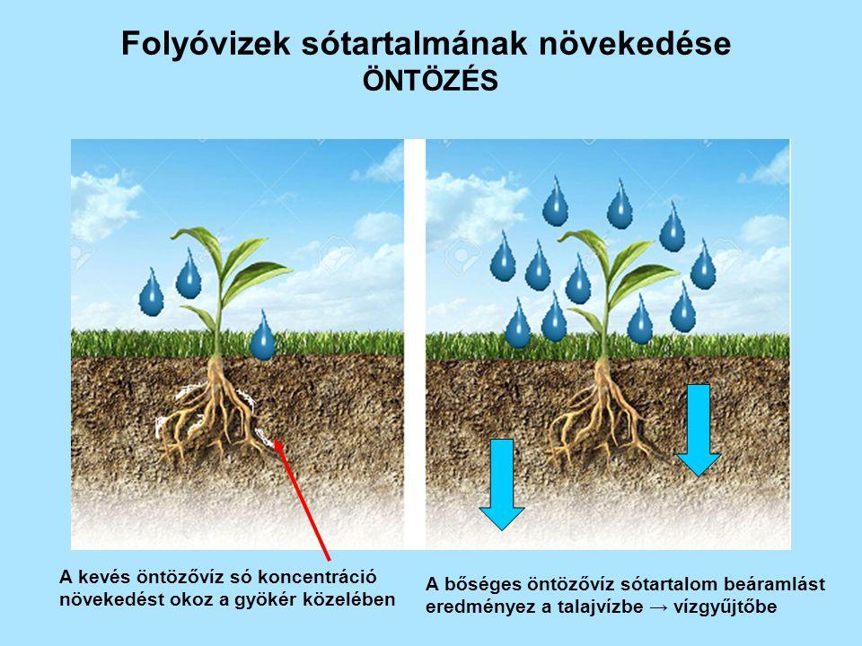 Folyóvizek sótartalmának növekedése ÖNTÖZÉS A kevés öntözővíz só koncentráció növekedést okoz a gyökér közelében A bőséges öntözővíz sótartalom beáramlást eredményez a talajvízbe → vízgyűjtőbe