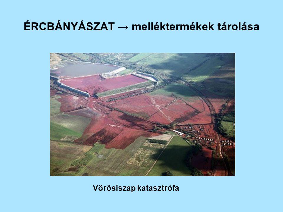 Folyóvizek sótartalmának növekedése Felső szakaszon jelentős öntözéses gazdálkodás Alsó szakaszon megnövekszik a sótartalom, öntözésre nem lehet használni Holt tenger Öntözővíz sótartalma < 500 mg/dm 3