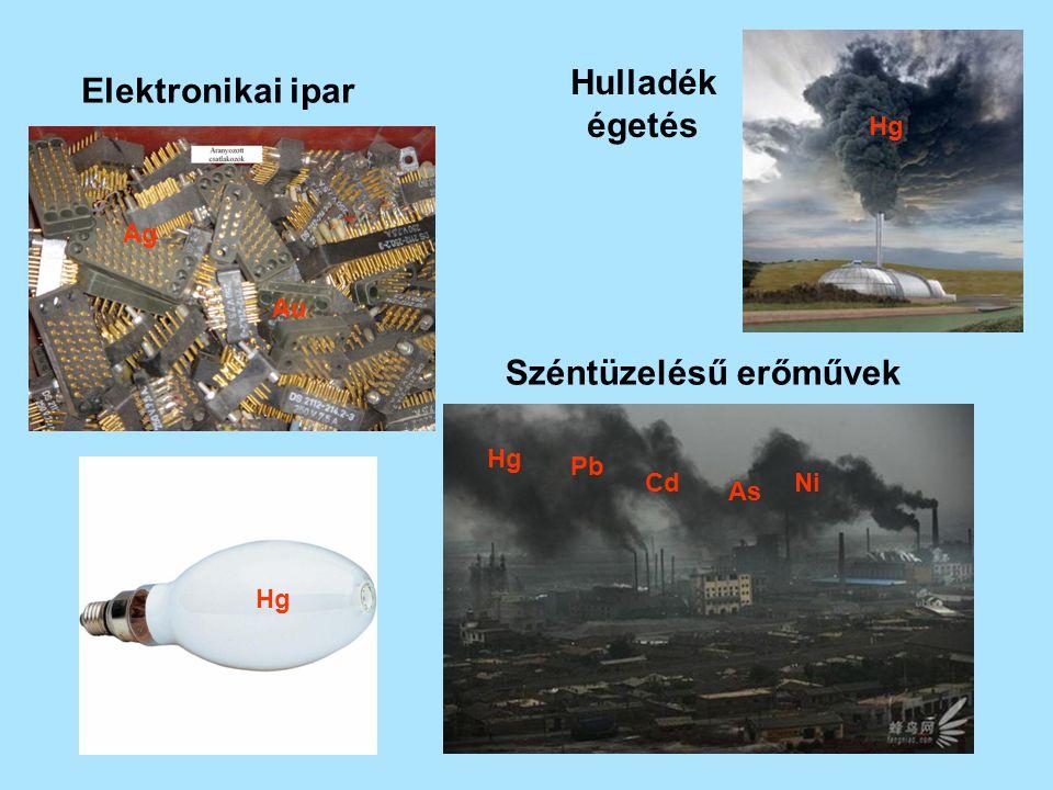 Higany cinnabarit (HgS) - elektronikai ipar energiatakarékos világító testek (5 mg Hg) (beltérben max 35μg Hg /m 3 ) elemek, akkumulátorok - klór-alkáli ipar - csávázó szer fenil-higany acetát a 70-es évek végéig minden csávázott vetőmag piros színű !!!