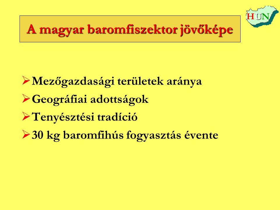 A magyar baromfiszektor jövőképe   Mezőgazdasági területek aránya   Geográfiai adottságok   Tenyésztési tradíció   30 kg baromfihús fogyasztás