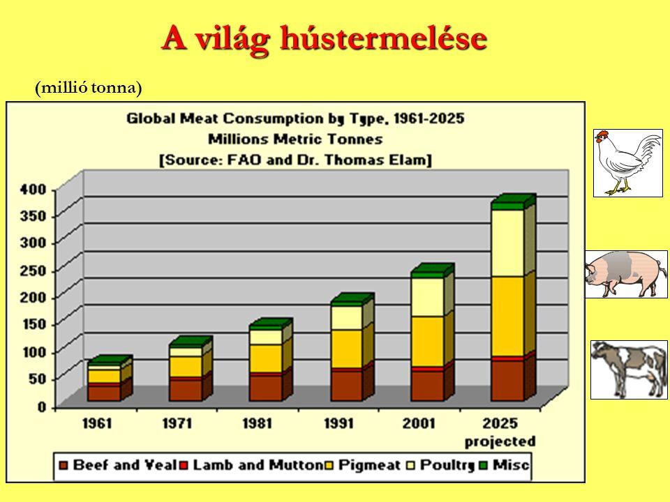 A világ hústermelése (millió tonna)