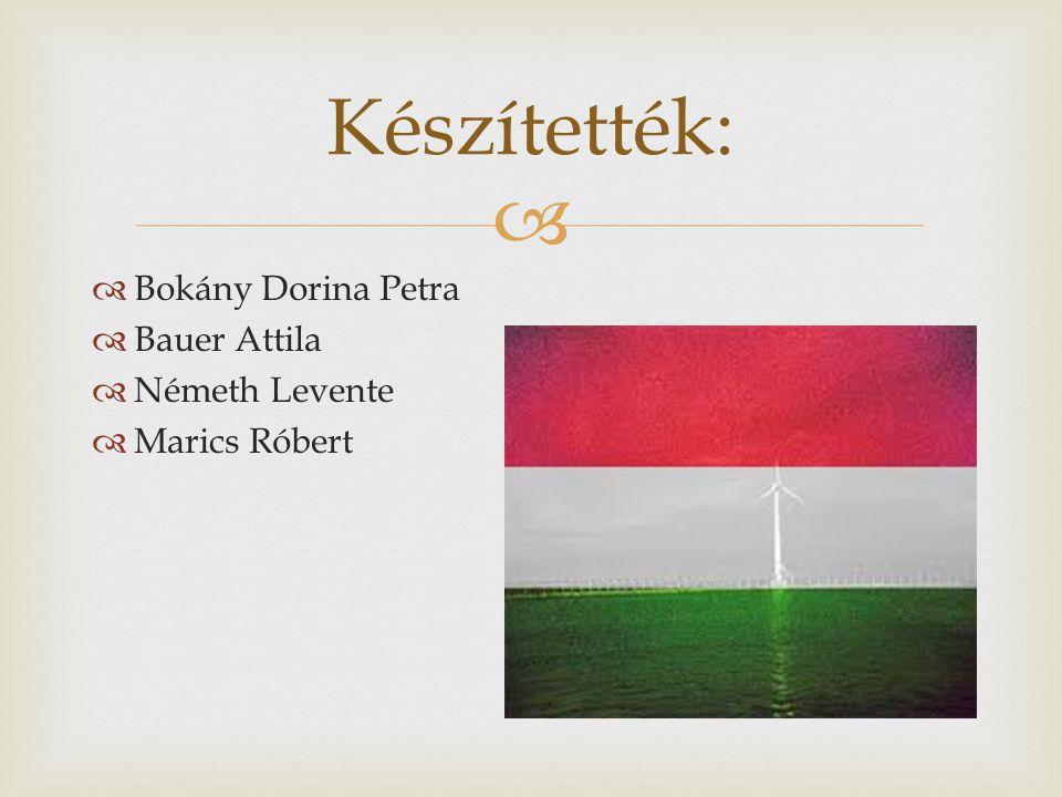   Bokány Dorina Petra  Bauer Attila  Németh Levente  Marics Róbert Készítették: