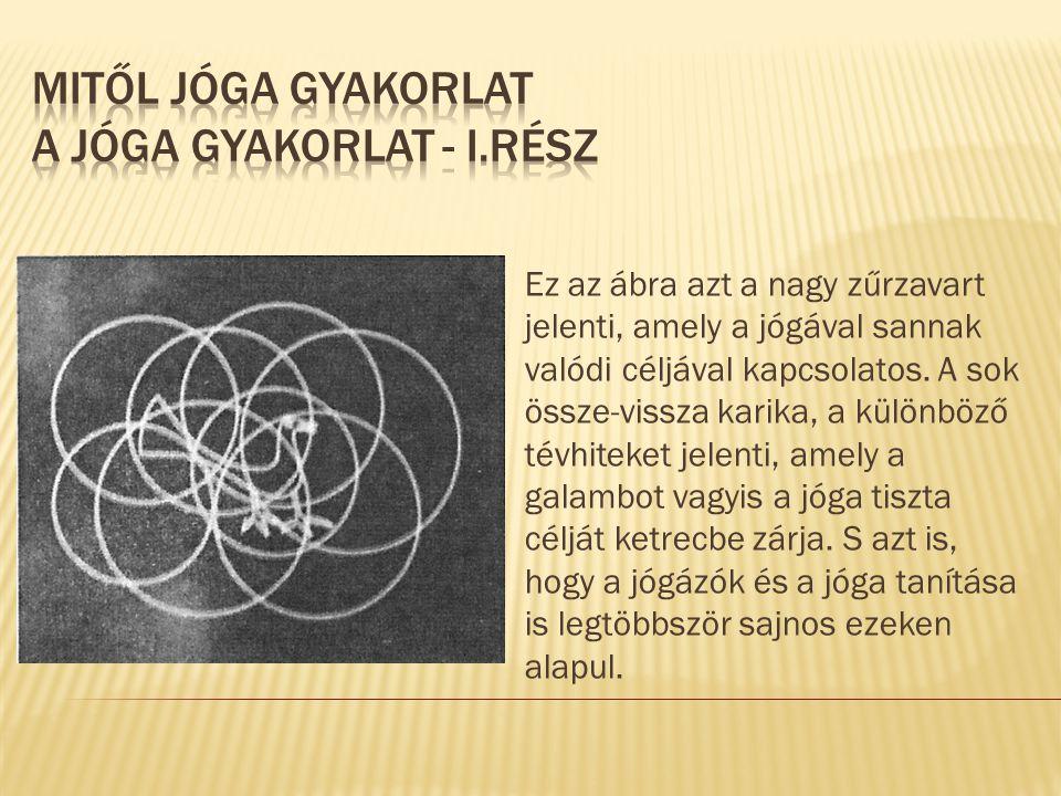 Ez az ábra azt a nagy zűrzavart jelenti, amely a jógával sannak valódi céljával kapcsolatos. A sok össze-vissza karika, a különböző tévhiteket jelenti