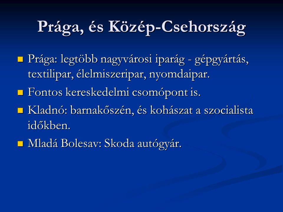 Prága, és Közép-Csehország Prága: legtöbb nagyvárosi iparág - gépgyártás, textilipar, élelmiszeripar, nyomdaipar. Prága: legtöbb nagyvárosi iparág - g