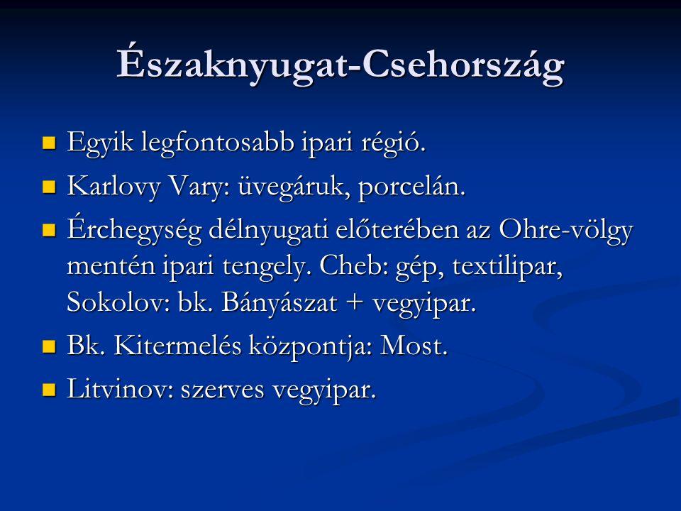 Északnyugat-Csehország Egyik legfontosabb ipari régió. Egyik legfontosabb ipari régió. Karlovy Vary: üvegáruk, porcelán. Karlovy Vary: üvegáruk, porce