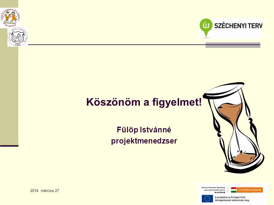 2014. március 27. 16 Köszönöm a figyelmet! Fülöp Istvánné projektmenedzser