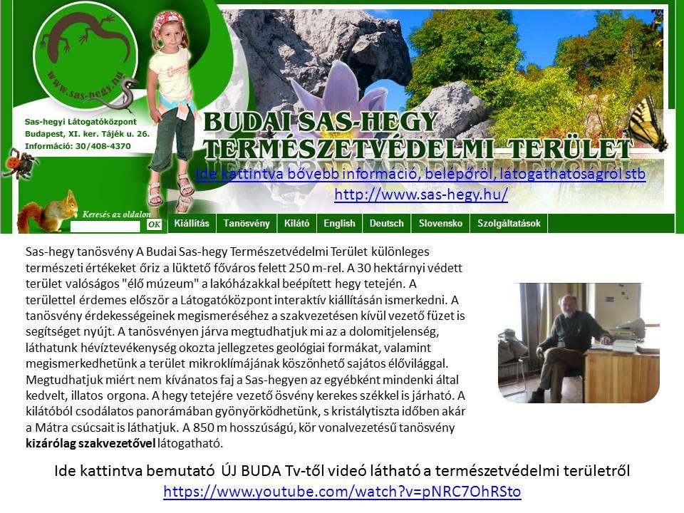 Ide kattintva bővebb információ, belépőröl, látogathatóságról stb http://www.sas-hegy.hu/ https://www.youtube.com/watch?v=pNRC7OhRSto