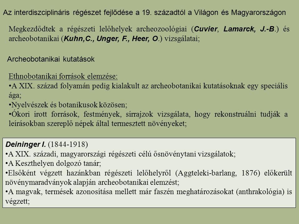 Ethnobotanikai források elemzése: A XIX. század folyamán pedig kialakult az archeobotanikai kutatásoknak egy speciális ága; Nyelvészek és botanikusok