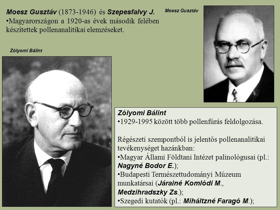 Moesz Gusztáv (1873-1946) és Szepesfalvy J. Magyarországon a 1920-as évek második felében készítettek pollenanalitikai elemzéseket. Zólyomi Bálint 192