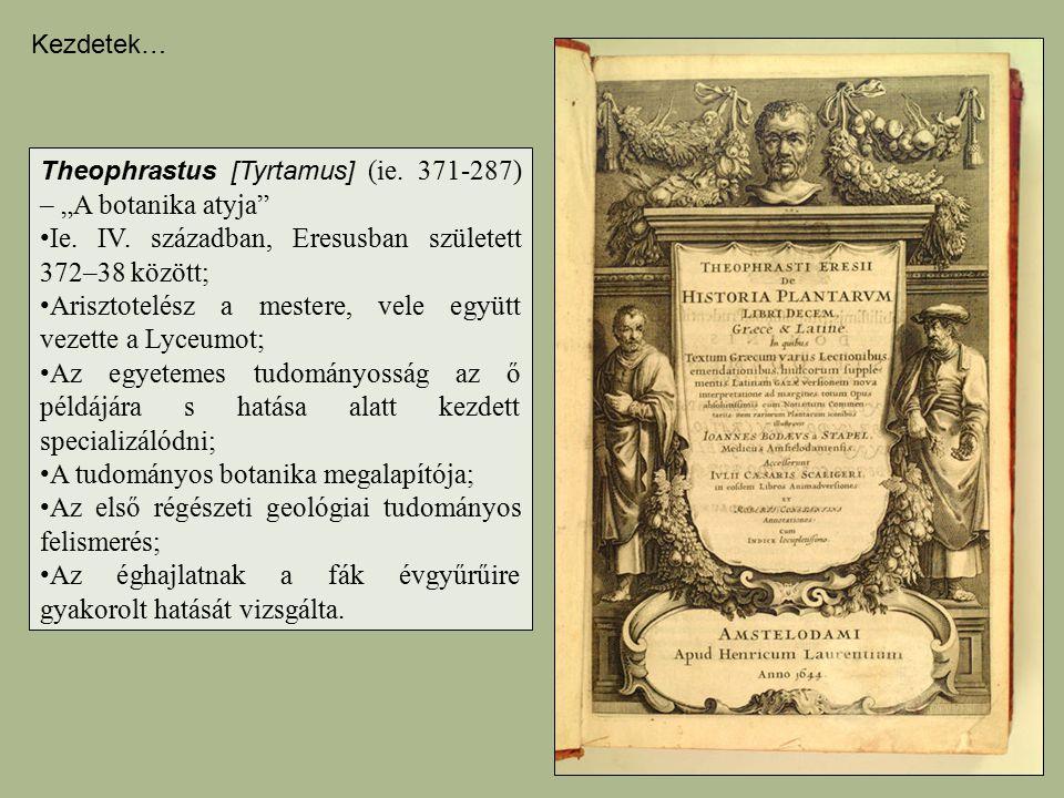 """Theophrastus [Tyrtamus] (ie. 371-287) – """"A botanika atyja"""" Ie. IV. században, Eresusban született 372–38 között; Arisztotelész a mestere, vele együtt"""