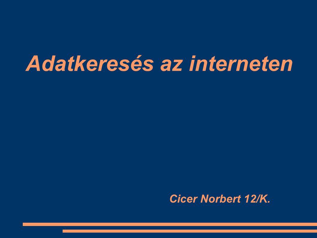 Internetes keresőoldalak Az internet gyakorlatilag végtelen adatmennyiséget tartalmaz A dokumentumokat és egyéb adatokat szolgáltató szerverek száma több millió, a tárolt dokumentumok száma pedig több száz millió A keresők ezekben a dokumentumokban keresnek kulcsszó vagy egyéb szempontok (paraméterek) alapján A keresők döntő többsége csak szöveges állományban tud keresni, de vannak kísérleti rendszerek képi, illetve hang formátumú keresésre A speciális keresőgépek feltérképezik a minél jobban a webes állományt A keresőoldal olyan keresőprogramot futtat, amit a felhasználó a saját böngészőjéből vezérel, de a keresőszerver erőforrásait használja