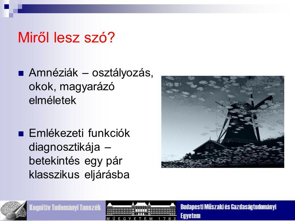 Kognitív Tudományi Tanszék Budapesti Műszaki és Gazdaságtudományi Egyetem Miről lesz szó.