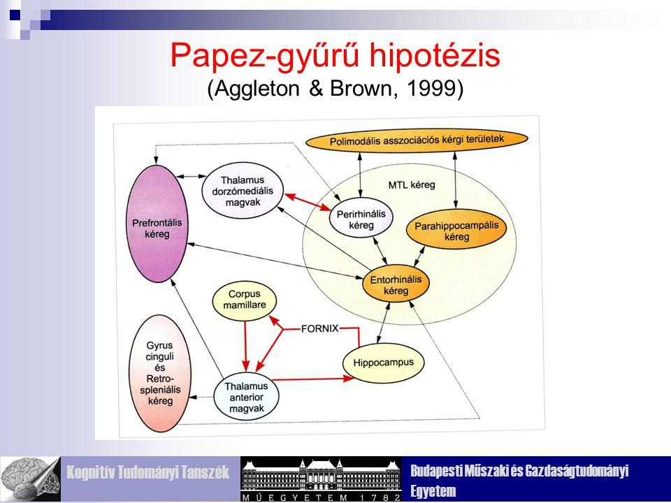 Kognitív Tudományi Tanszék Budapesti Műszaki és Gazdaságtudományi Egyetem Papez-gyűrű hipotézis (Aggleton & Brown, 1999)