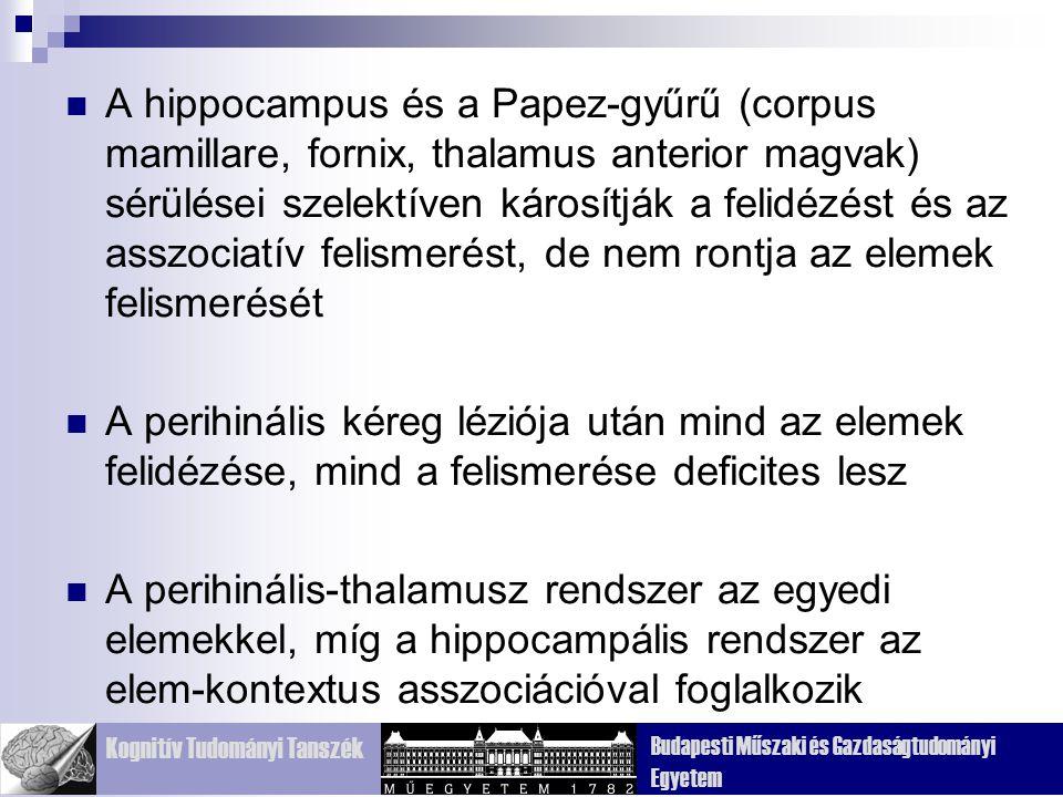 Kognitív Tudományi Tanszék Budapesti Műszaki és Gazdaságtudományi Egyetem A hippocampus és a Papez-gyűrű (corpus mamillare, fornix, thalamus anterior magvak) sérülései szelektíven károsítják a felidézést és az asszociatív felismerést, de nem rontja az elemek felismerését A perihinális kéreg léziója után mind az elemek felidézése, mind a felismerése deficites lesz A perihinális-thalamusz rendszer az egyedi elemekkel, míg a hippocampális rendszer az elem-kontextus asszociációval foglalkozik