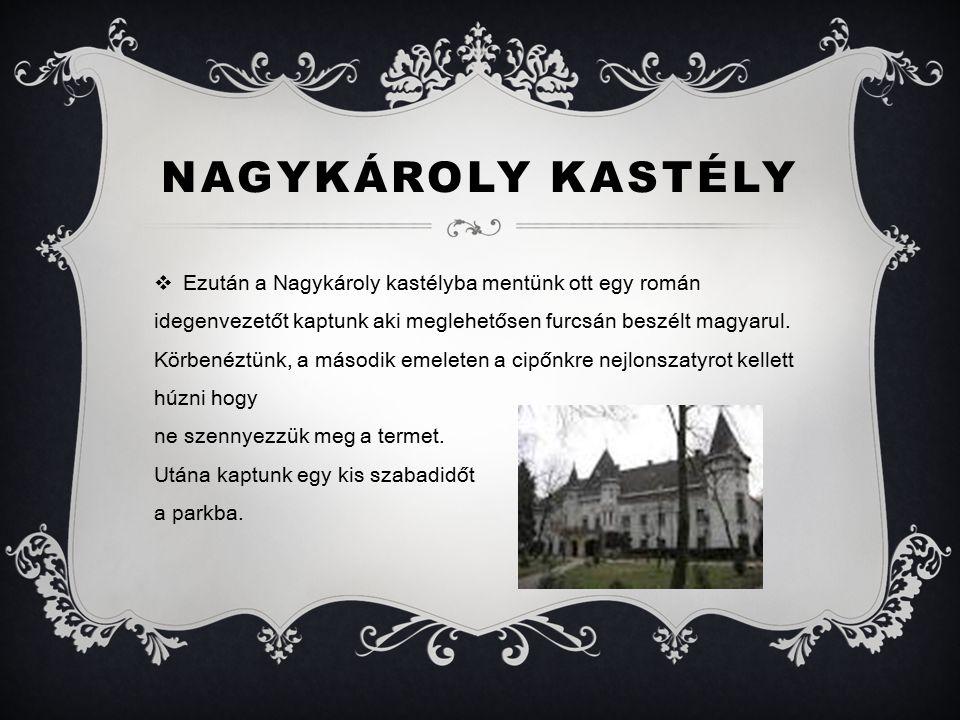NAGYKÁROLY KASTÉLY  Ezután a Nagykároly kastélyba mentünk ott egy román idegenvezetőt kaptunk aki meglehetősen furcsán beszélt magyarul.