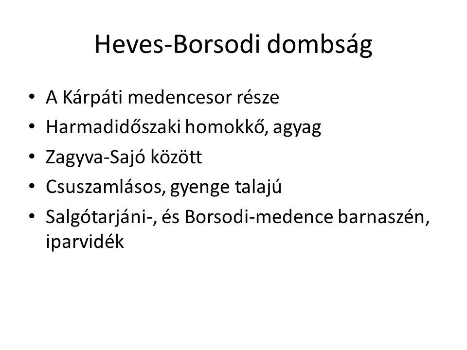Heves-Borsodi dombság A Kárpáti medencesor része Harmadidőszaki homokkő, agyag Zagyva-Sajó között Csuszamlásos, gyenge talajú Salgótarjáni-, és Borsod