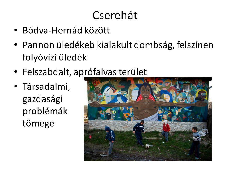 Cserehát Bódva-Hernád között Pannon üledékeb kialakult dombság, felszínen folyóvízi üledék Felszabdalt, aprófalvas terület Társadalmi, gazdasági probl