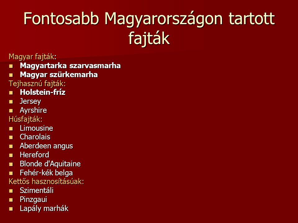 Fontosabb Magyarországon tartott fajták Magyar fajták: Magyartarka szarvasmarha Magyartarka szarvasmarha Magyar szürkemarha Magyar szürkemarha Tejhasz