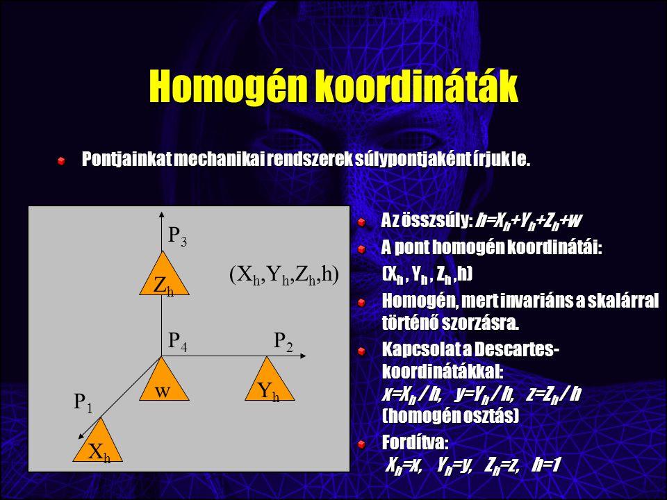 Homogén koordináták Pontjainkat mechanikai rendszerek súlypontjaként írjuk le.
