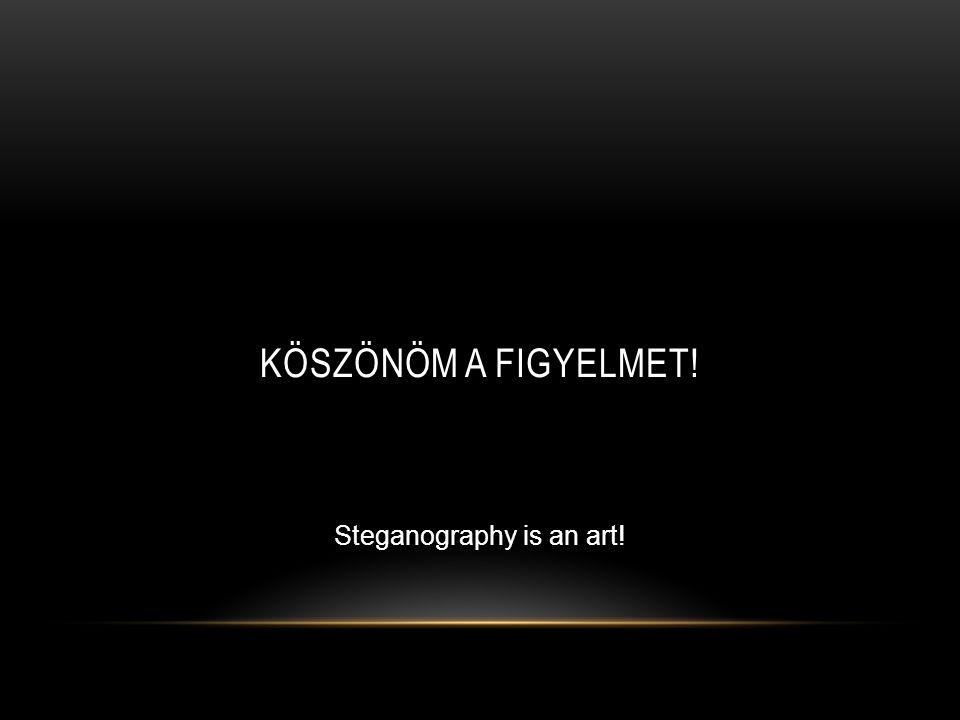 KÖSZÖNÖM A FIGYELMET! Steganography is an art!