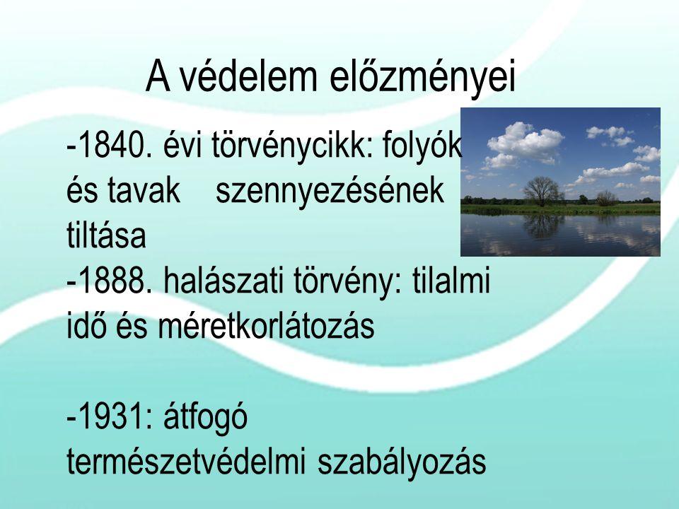 -1840. évi törvénycikk: folyók és tavak szennyezésének tiltása -1888. halászati törvény: tilalmi idő és méretkorlátozás -1931: átfogó természetvédelmi