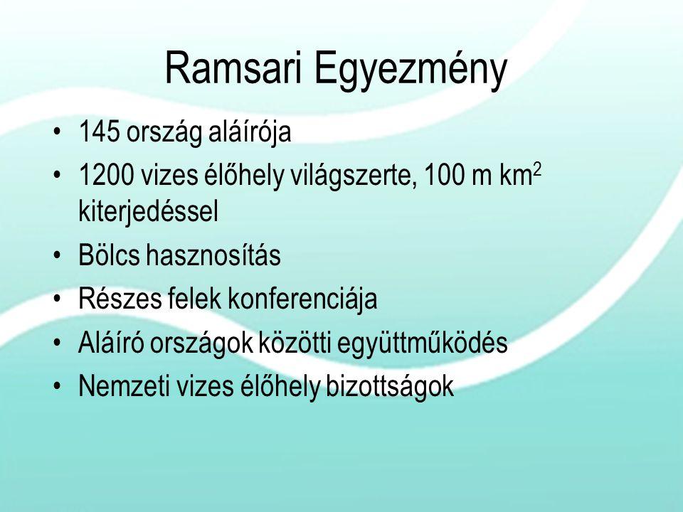 Ramsari Egyezmény 145 ország aláírója 1200 vizes élőhely világszerte, 100 m km 2 kiterjedéssel Bölcs hasznosítás Részes felek konferenciája Aláíró ors