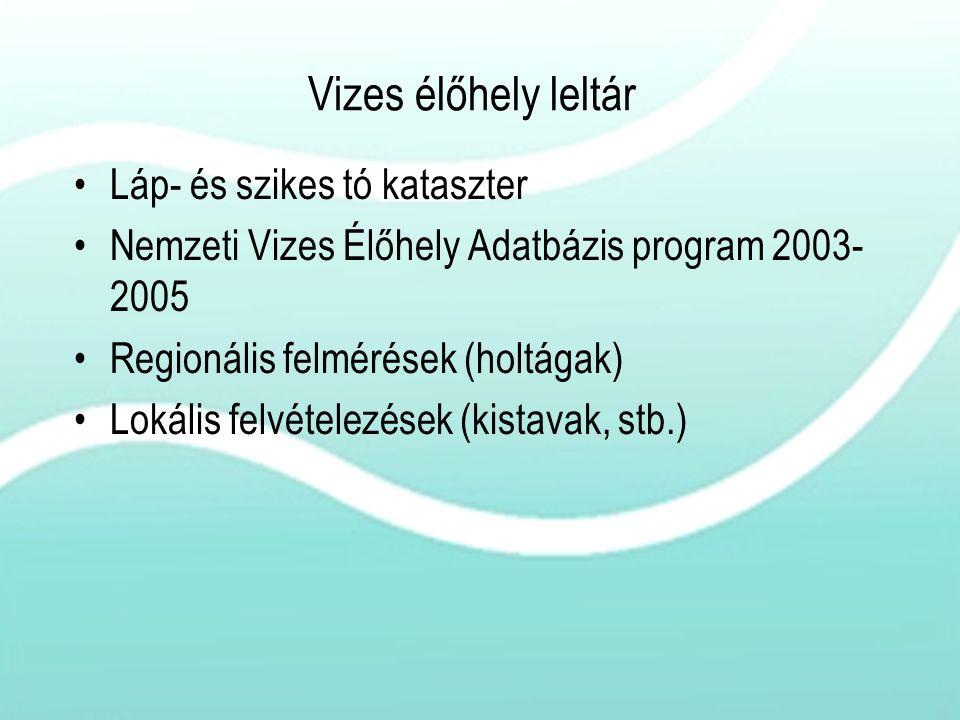 Vizes élőhely leltár Láp- és szikes tó kataszter Nemzeti Vizes Élőhely Adatbázis program 2003- 2005 Regionális felmérések (holtágak) Lokális felvétele