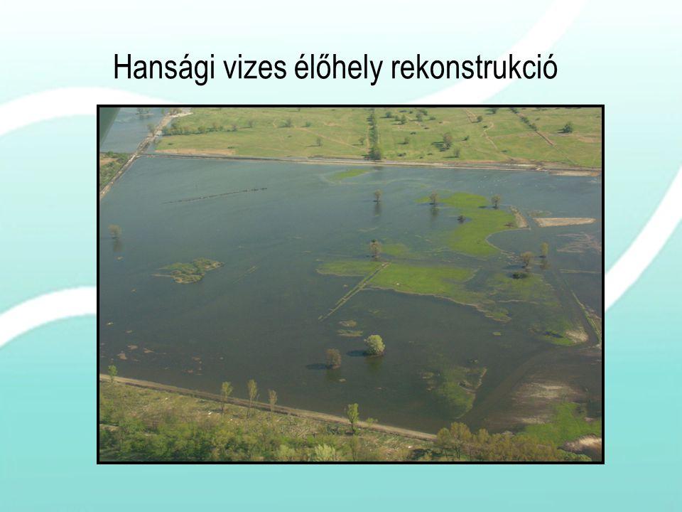 Hansági vizes élőhely rekonstrukció