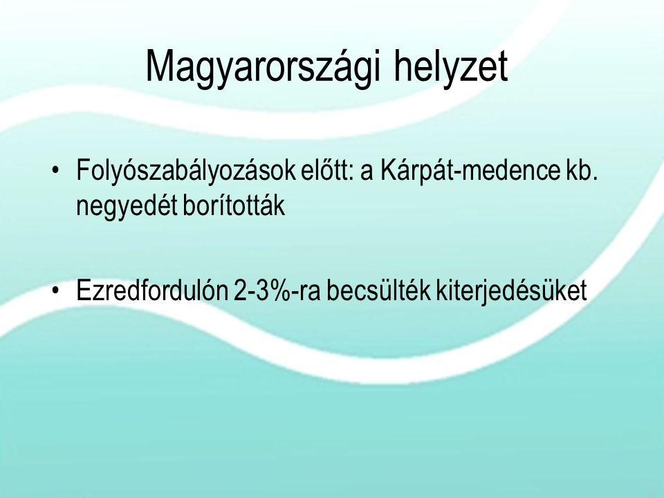 Magyarországi helyzet Folyószabályozások előtt: a Kárpát-medence kb. negyedét borították Ezredfordulón 2-3%-ra becsülték kiterjedésüket