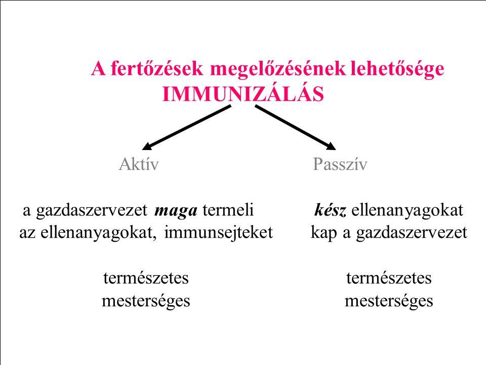 A fertőzések megelőzésének lehetősége IMMUNIZÁLÁS AktívPasszív a gazdaszervezet maga termelikész ellenanyagokat az ellenanyagokat, immunsejteketkap a gazdaszervezettermészetesmesterséges
