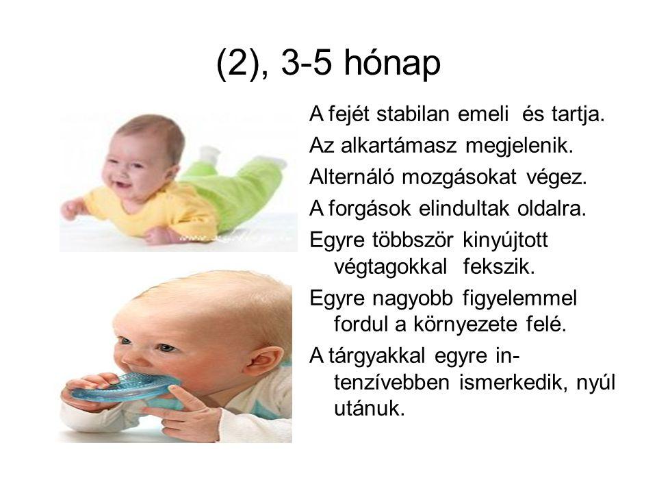 (2), 3-5 hónap A fejét stabilan emeli és tartja. Az alkartámasz megjelenik. Alternáló mozgásokat végez. A forgások elindultak oldalra. Egyre többször