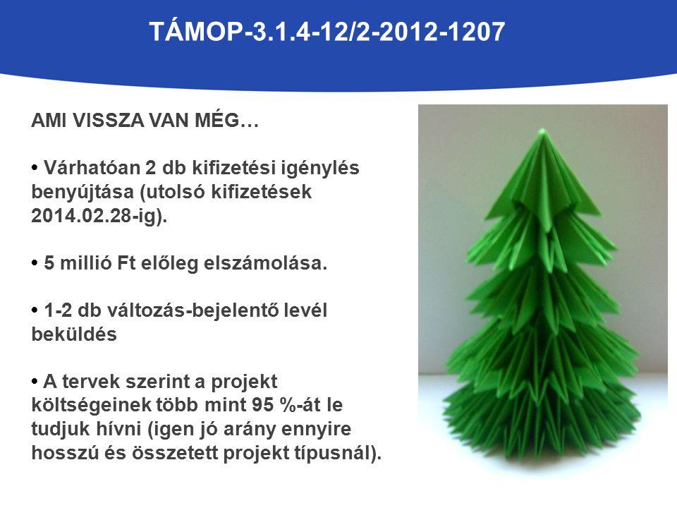 TÁMOP-3.1.4-12/2-2012-1207 AMI VISSZA VAN MÉG… Várhatóan 2 db kifizetési igénylés benyújtása (utolsó kifizetések 2014.02.28-ig).