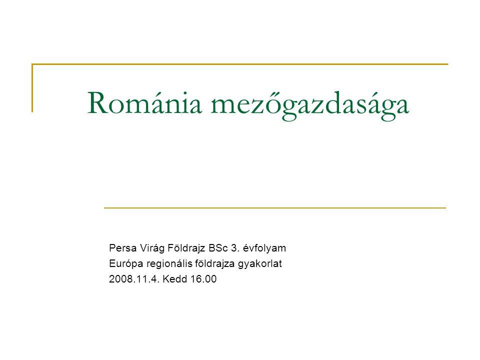 Románia mezőgazdasága Persa Virág Földrajz BSc 3.