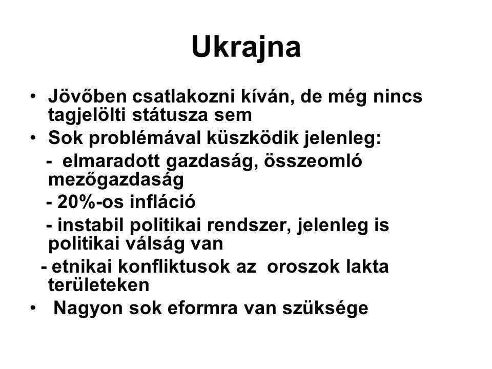 Ukrajna Jövőben csatlakozni kíván, de még nincs tagjelölti státusza sem Sok problémával küszködik jelenleg: - elmaradott gazdaság, összeomló mezőgazdaság - 20%-os infláció - instabil politikai rendszer, jelenleg is politikai válság van - etnikai konfliktusok az oroszok lakta területeken Nagyon sok eformra van szüksége