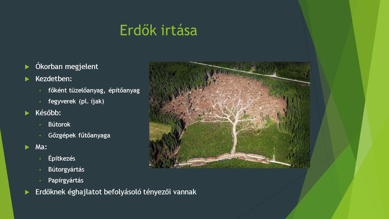 Erdők irtása  Ókorban megjelent  Kezdetben: főként tüzelőanyag, építőanyag fegyverek (pl. íjak)  Később: Bútorok Gőzgépek fűtőanyaga  Ma: Építkezé