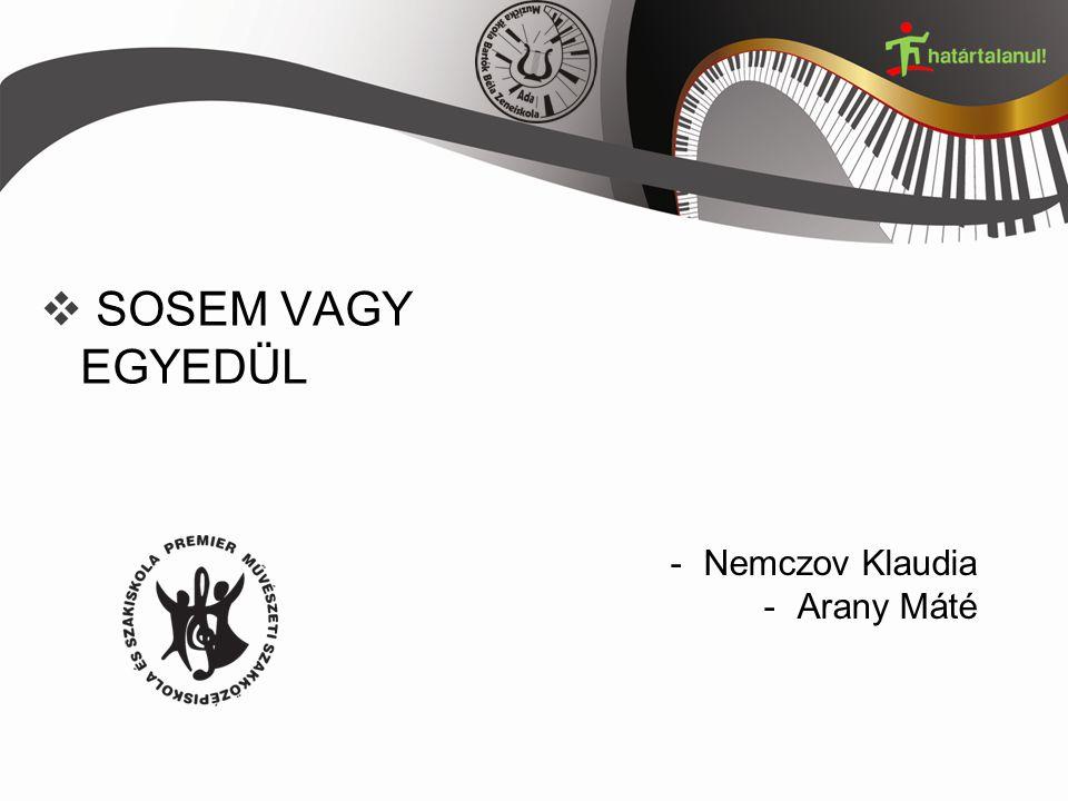  SOSEM VAGY EGYEDÜL -Nemczov Klaudia -Arany Máté