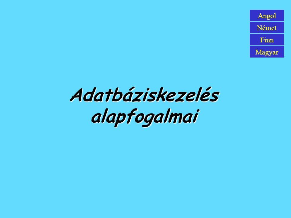 Adatbáziskezelés alapfogalmai Angol Német Finn Magyar