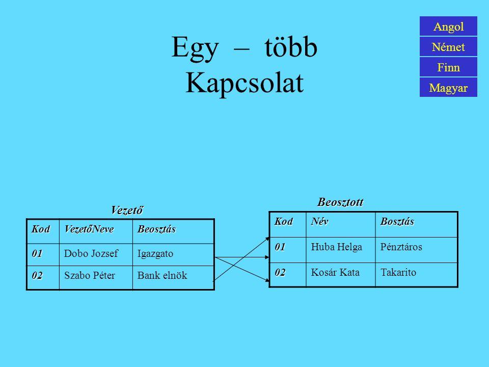 Grundbegriffe der Datenbankverarbeitung Englisch Deutsch Finnisch Ungarisch