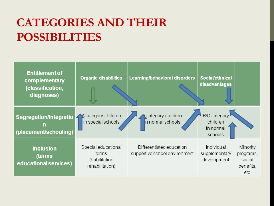 CATEGORIES AND THEIR POSSIBILITIES Entitlement of complementary (classification, diagnoses) Organic disabilities Learning/behavioral disorders Social/